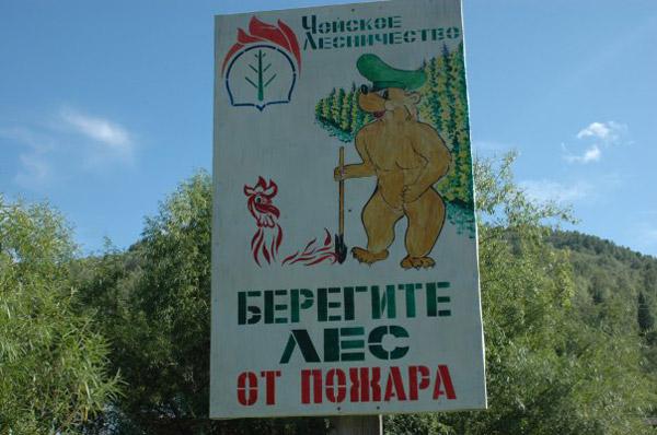 На фото: Чойское лесничество. Берегите лес от пожара. Автор фото: Хоныч. Дата: 01.10.2009.
