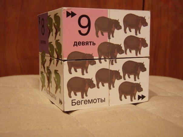 На фото: Бегемоты девять. Автор фото: Вика. Дата: 07.11.2009.